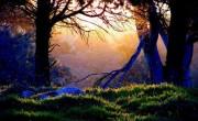 30 Υπέροχα Παραδείγματα Φωτογραφίας Χαμηλoύ Φωτισμού