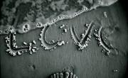 Γιατί ο Έρωτας Φθίνει Τόσο Γρήγορα